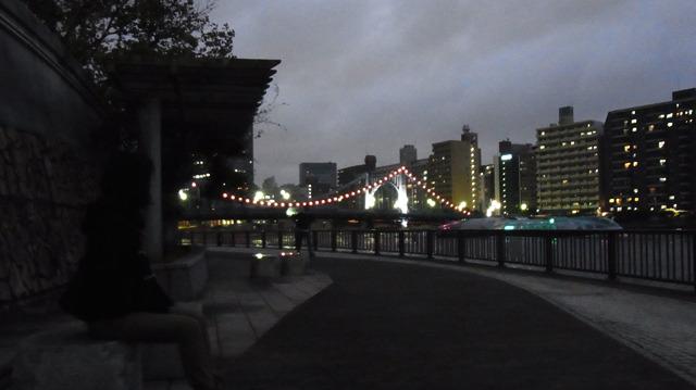左にはピンク色にライトアップされた橋