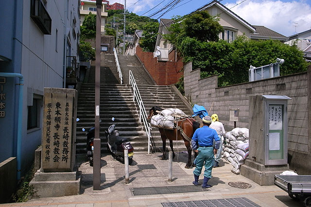 馬に遭遇。(2008年撮影)