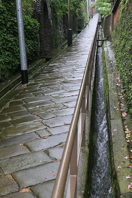 雨水は側溝を勢いよく流れていた。昔は側溝がなかったのかもしれない。
