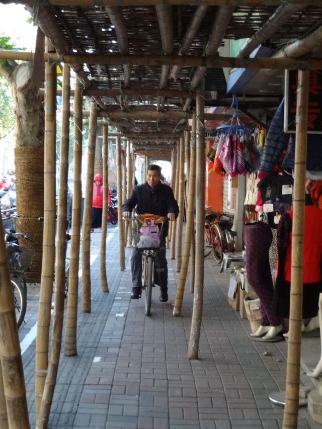 犬の散歩もあれば自転車も通る。こんな風景は常識外ではないろうか