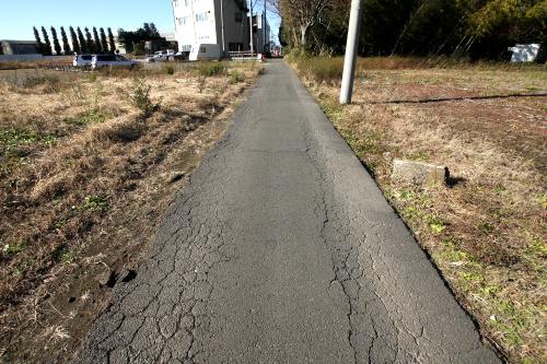 両脇にアスファルトを止めるものがない野良道路