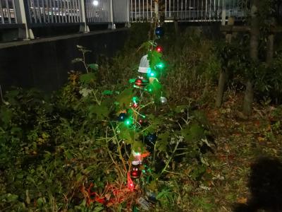 クリスマスツリーにはみえない。