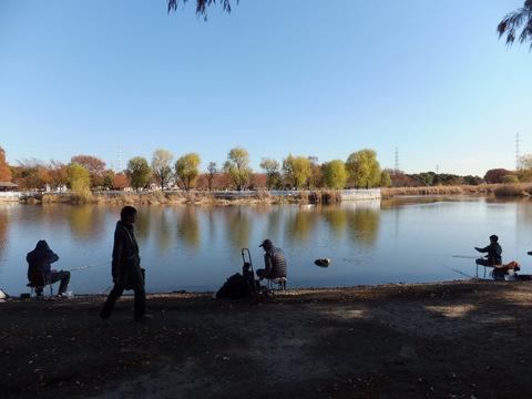 池では釣りをしている人多数