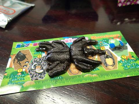 昆虫グミ図鑑で作ったカブトムシ。容赦なく黒い……