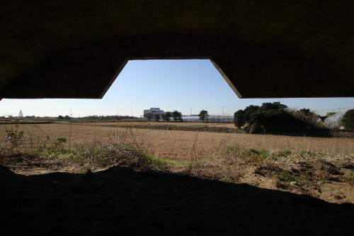 周囲が至って普通の田んぼなだけに、なんとも不思議な感じ光景だ