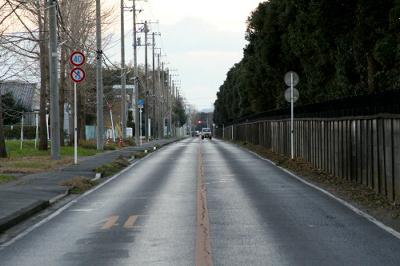 茂原に残る掩体壕群の南に伸びる真っ直ぐな道路。これは滑走路の跡らしい