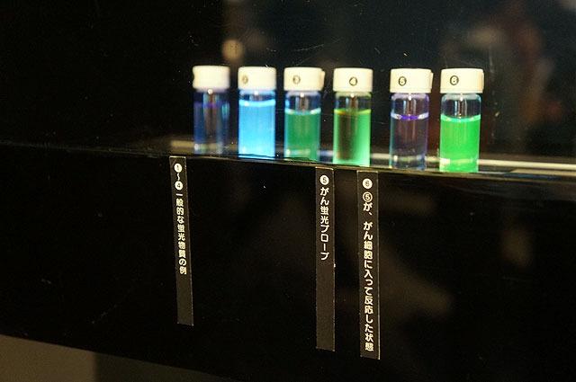 こちらは(5)の液体が、反応すると(6)の蛍光色になります。これは…