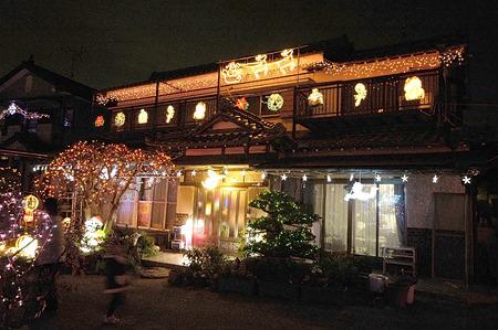 松とか梅とかに電飾(「浮かれ電飾を鑑賞する2007」)