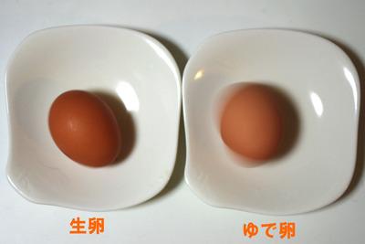 これはたしかに、生卵の中身が不安定だから