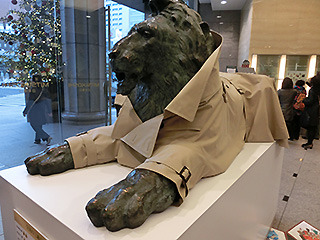 コートを着せられてるライオンを見たり