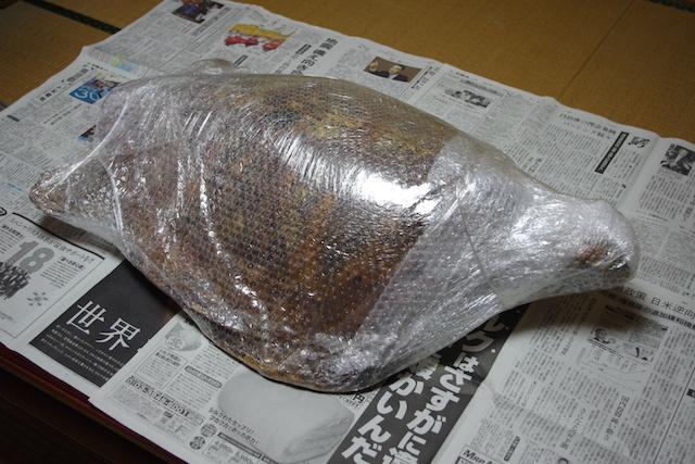 海亀の梱包をとく。