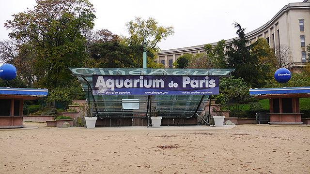 世界一高いパリの水族館「シネアクア」