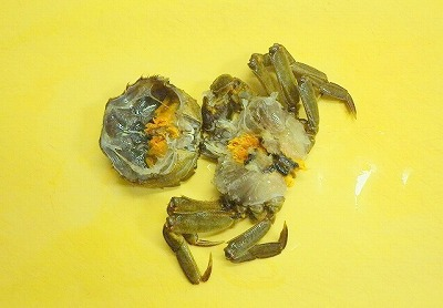 黄色いのがミソ。甲羅や小皿に取り分けておく。