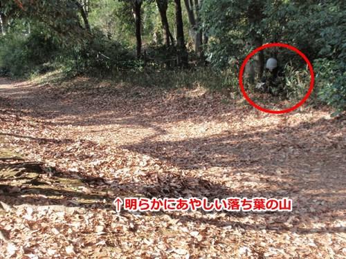 木の葉隠れと見せかけて、草陰にじっと隠れるウズラ隠れの術というフェイク。