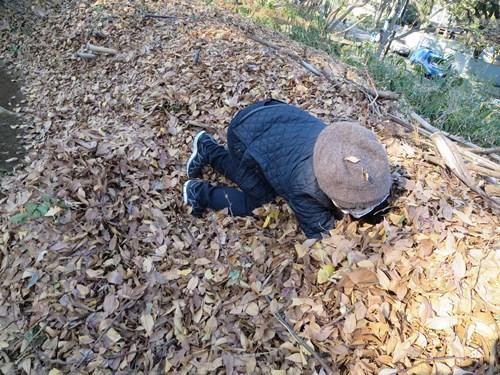 これが、私の考える木の葉隠れに挑むベストな体勢。