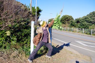 ありがとう、犬吠崎の大自然ヒャッハー!
