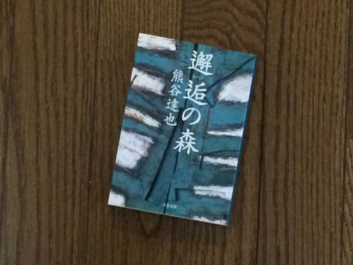 むずかしい漢字の本