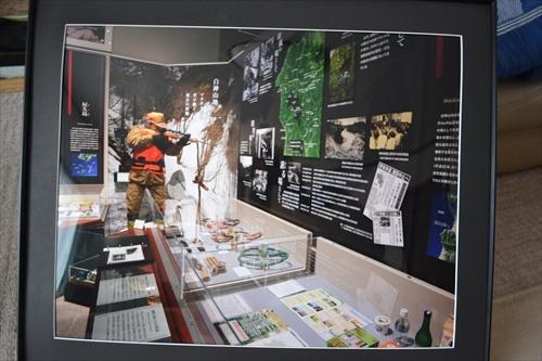 佐倉の国立歴史民族博物館の写真