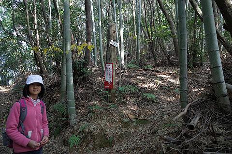 娘の言う通りにしたところ、竹やぶの中に登り口を発見。