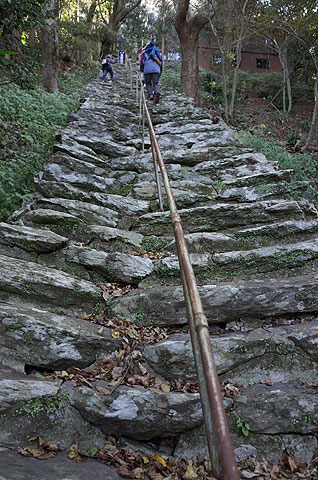 すごい階段(古くて途中が陥没してる)も健在。