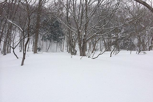 こういう斜面で雪洞を掘りました。練習なので山は登りません。