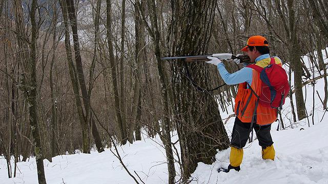 鹿を狩って、解体もします!