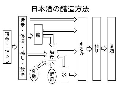 日本酒の製造工程をザックリと説明。日本酒は平行復発酵という高度な技術で作られているのです。黒い資料でスイマセン。