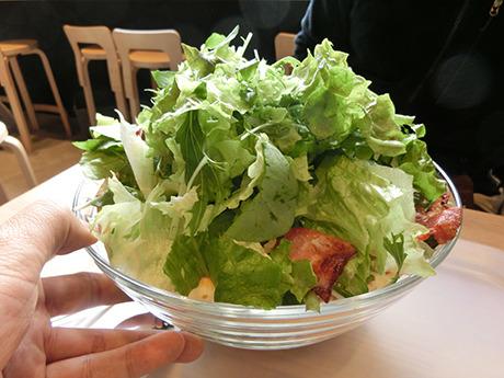 中にパリパリのトルティーヤを敷いたバリバリチョップサラダ。