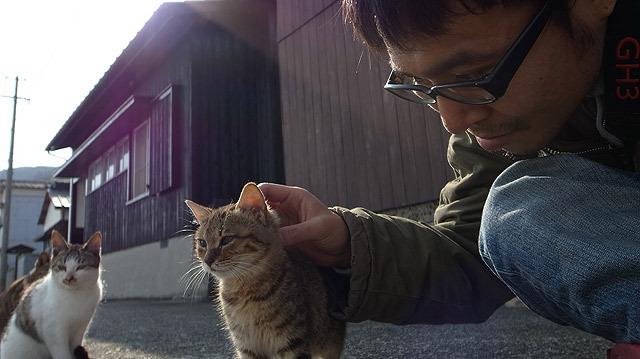 子猫には触れるようになった