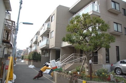 千駄木、文林中学校すぐ南の「八木村」路地も、マンションに。