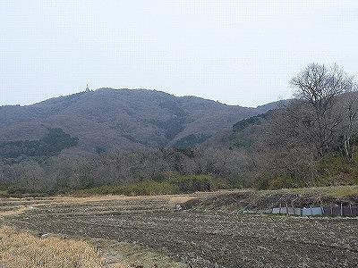 冬の山は緑も減り、虫の姿も無い