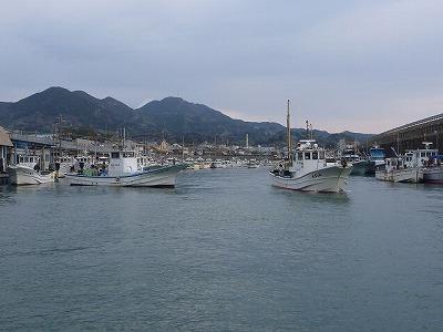 海も寂しくなる。特に沿岸部にはもう珍しい生き物や大きな魚がほとんどいない。