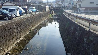 汚水などは流れ込んでいないが、決して清流とも呼べない街中の川へ。