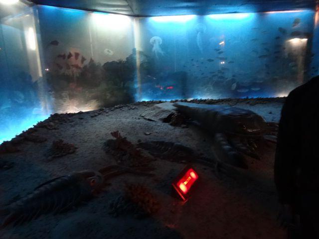 恐竜のもっと前、4億年以上前の古生代の海の中からスタート。 古生代というと三葉虫とかが有名だが、ここではジャイアントウォータースコーピオンが待ち構える