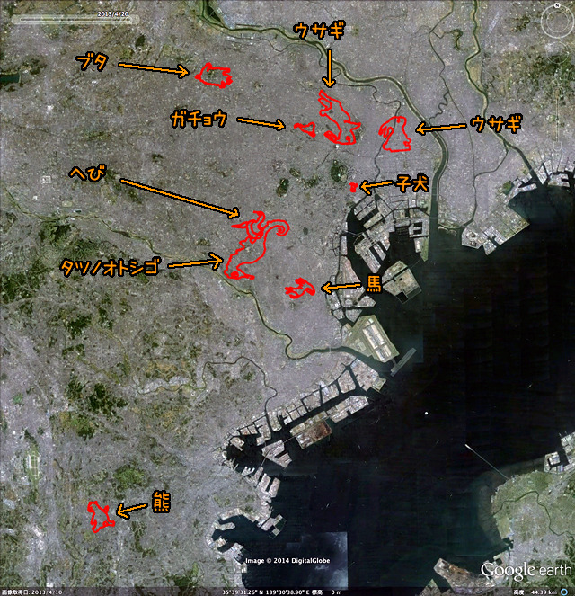 星座は大地にあったのだ(GPSログをGoogle earthで表示したものをキャプチャ、加筆)