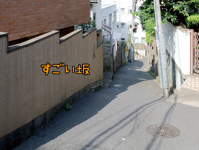セオリー通り地形がダイナミック。