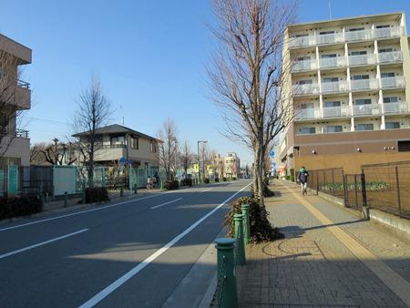 畑と住宅と空き地が入り交じっている街並み