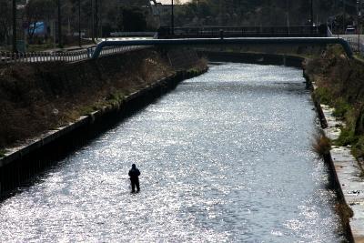 あまり水質が良くなさそうなこの川で、釣りをしている人がいて驚いた。鯉でも釣っているのだろうか