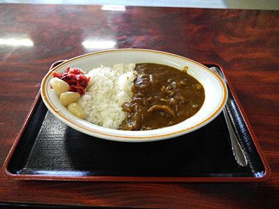 出てきたカレーも「ザ・普通」それが正しい昭和の温泉施設です