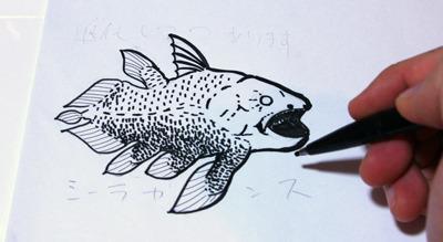 シーラカンス(肉鰭類):約4億年前に誕生し、深海へ