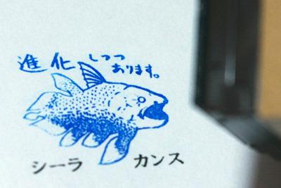 「進化しつつあります。」 深海の色、青で押したい。