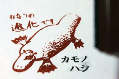 カモノハシ(単孔類):1億5000万年前で進化を中断。