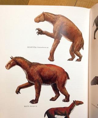 昔はもっと変な巨大哺乳類がいたらしい。(『新版 絶滅哺乳類図鑑』より)