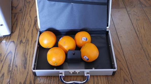 中に入っているのはオレンジである。意味はない。