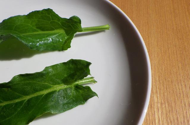 葉のつけねの形で見分けられる。