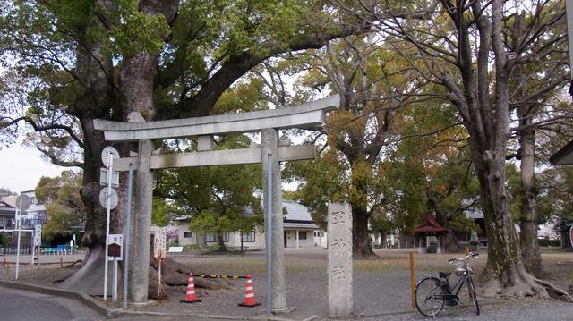 立派な木がうわっている神社だった。なんにも囲まれておらず広場といった感じ