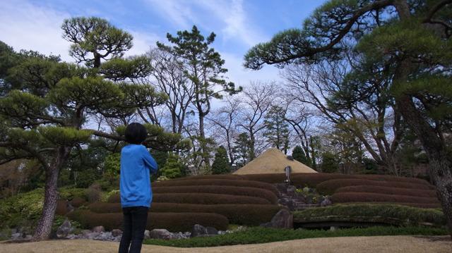 そういえばまだ見れていなかった富士山。下には茶畑と安倍川が表現されている