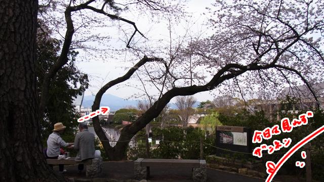 あのベンチから眺める富士山が綺麗なのだそうだ。木がちょうど絵のフレームのように見えるらしい。しかし残念ながら雲がかかって富士山見れず