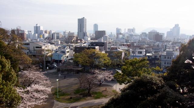確かに景色は良い。しかし方向が富士山とは違う気がする