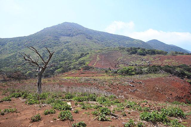 野崎火山火口跡。